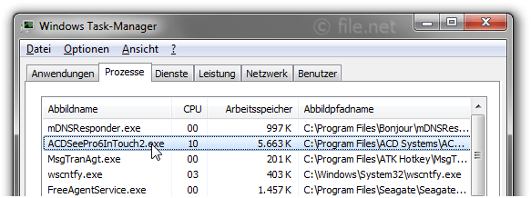 Windows Task-Manager mit ACDSeePro6InTouch2