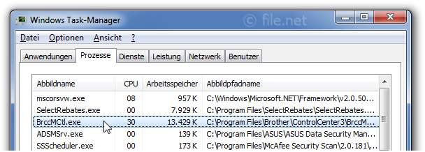 Windows Task-Manager mit BrccMCtl