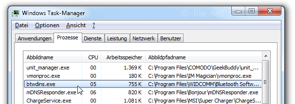 Windows Task-Manager mit btwdins