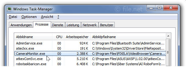Windows Task-Manager mit CameraMonitor