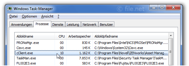 Windows Task-Manager mit cClient