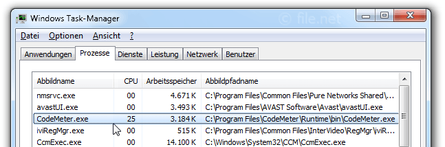 Windows Task-Manager mit CodeMeter