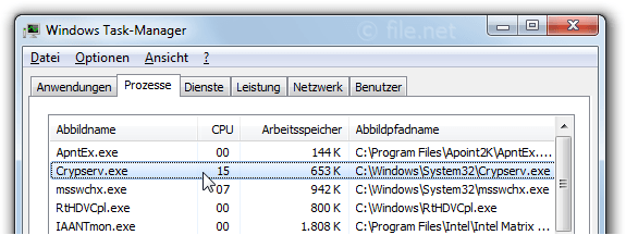 Windows Task-Manager mit crypserv