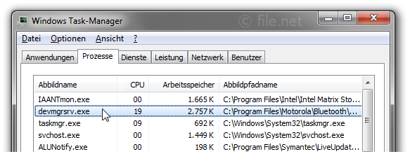 Windows Task-Manager mit devmgrsrv