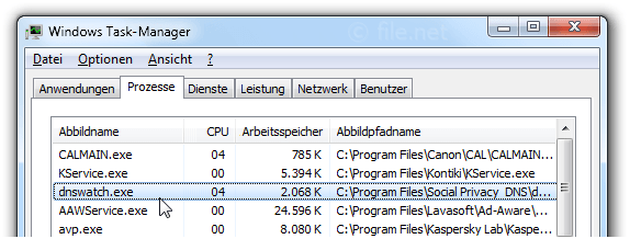 Windows Task-Manager mit dnswatch