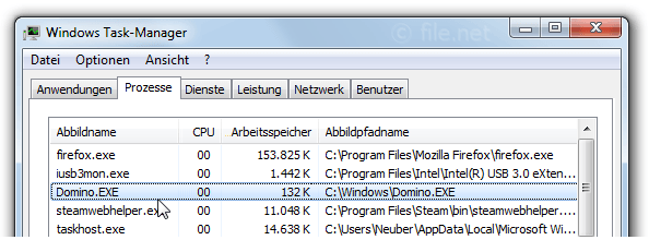 Windows Task-Manager mit Domino