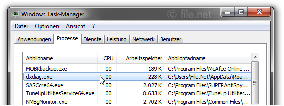 Windows Task-Manager mit dxdiag