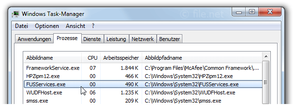 Windows Task-Manager mit FUSServices