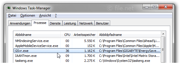 Windows Task-Manager mit GSvr