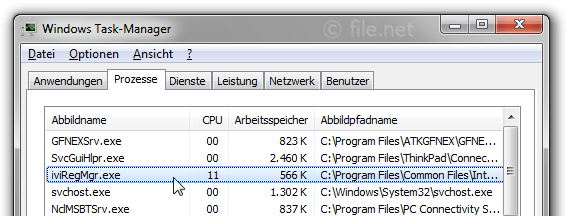 Windows Task-Manager mit iviRegMgr