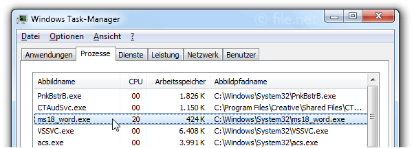 Windows Task-Manager mit ms18_word