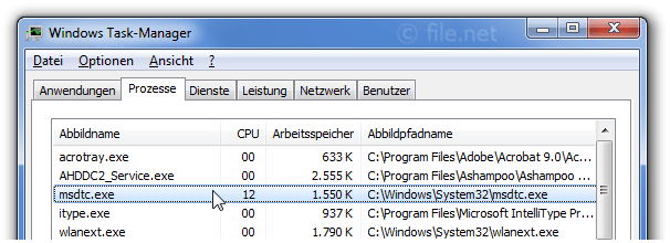 Windows Task-Manager mit msdtc
