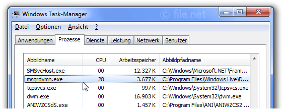Windows Task-Manager mit msgrdvmn