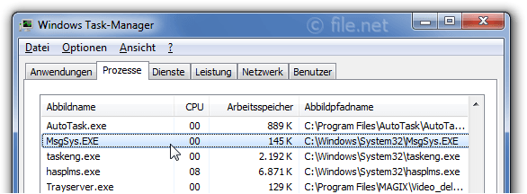 Windows Task-Manager mit MsgSys