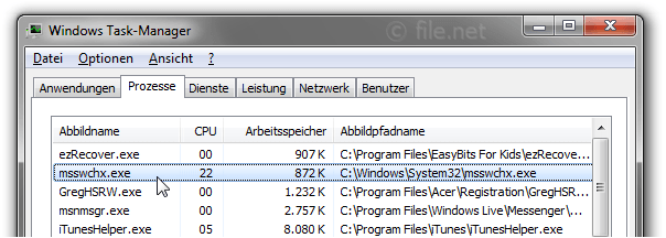 Windows Task-Manager mit msswchx