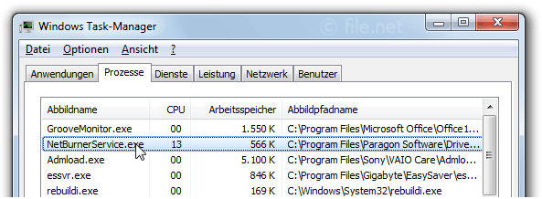 Windows Task-Manager mit NetBurnerService