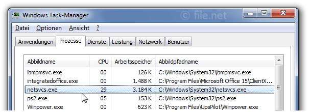 Windows Task-Manager mit netsvcs