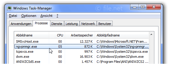 Windows Task-Manager mit ngvpnmgr