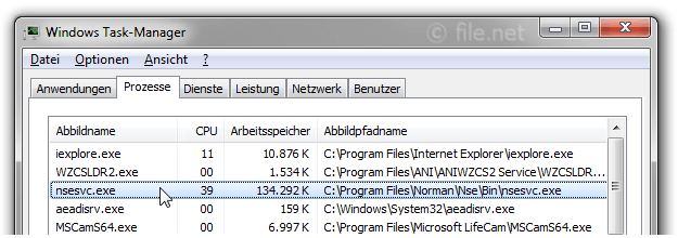Windows Task-Manager mit nsesvc