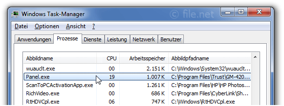 Windows Task-Manager mit Panel