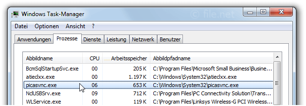 Windows Task-Manager mit picasvnc