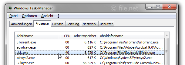 Windows Task-Manager mit slsk