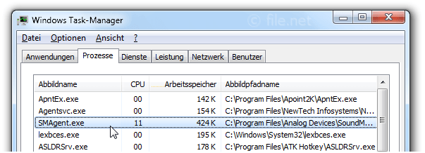 Windows Task-Manager mit SMAgent