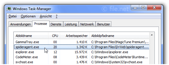 Windows Task-Manager mit spideragent