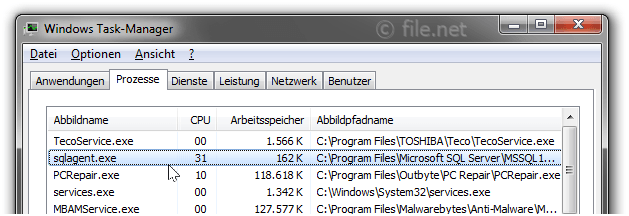 Windows Task-Manager mit sqlagent