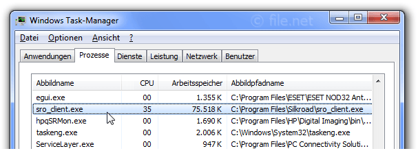 Windows Task-Manager mit sro_client