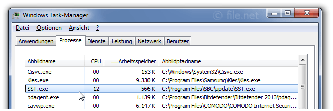 Windows Task-Manager mit SST
