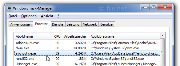 Windows Task-Manager mit svchosty