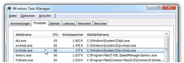 Windows Task-Manager mit svchots
