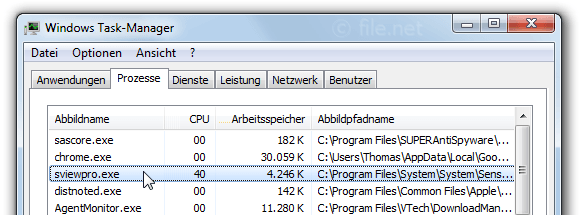 Windows Task-Manager mit sviewpro
