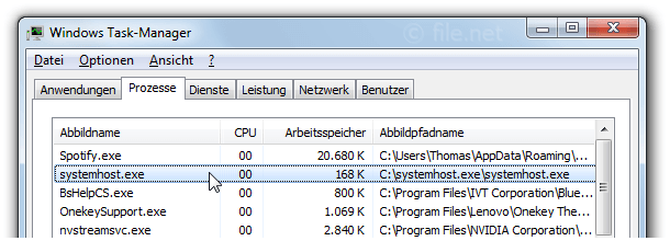 Windows Task-Manager mit systemhost