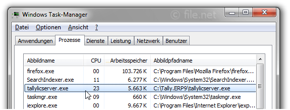 Windows Task-Manager mit tallylicserver