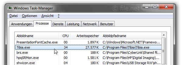 Windows Task-Manager mit Tibia