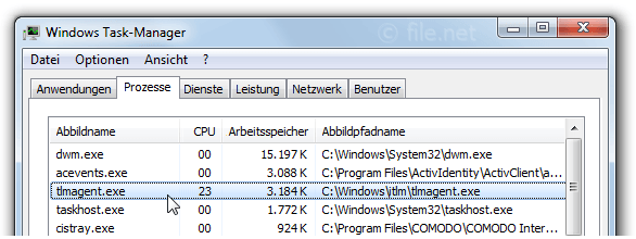 Windows Task-Manager mit tlmagent