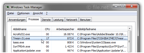 Windows Task-Manager mit Tmesrv31