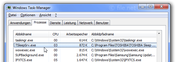 Windows Task-Manager mit TSleepSrv