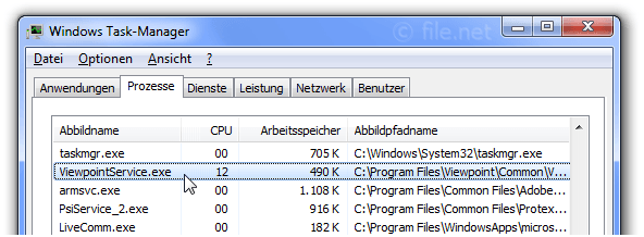 Windows Task-Manager mit ViewpointService
