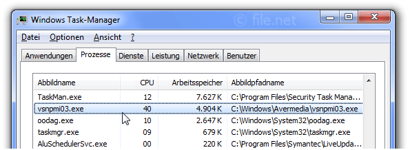 Windows Task-Manager mit vsnpmi03