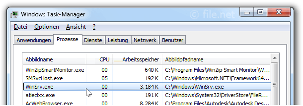 Windows Task-Manager mit winsrv
