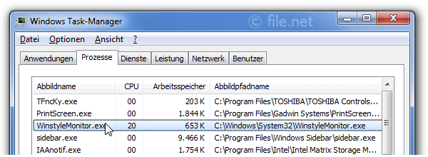 Windows Task-Manager mit WinstyleMonitor