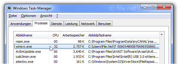 Windows Task-Manager mit winsvc