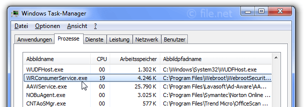 Windows Task-Manager mit WRConsumerService