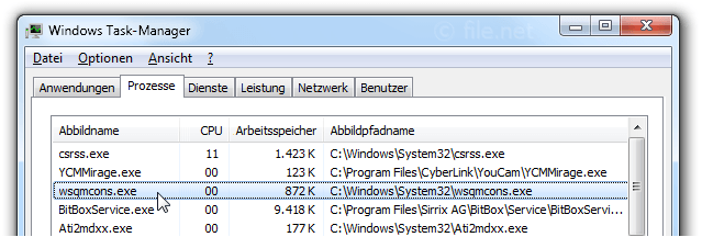 Windows Task-Manager mit wsqmcons