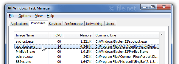 Windows Task Manager with accrdsub