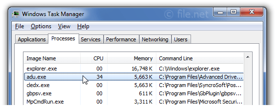 Windows Task Manager with adu