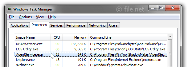 Windows Task Manager with AgentService